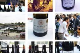 Foire aux vins Carrefour, hissez haut !