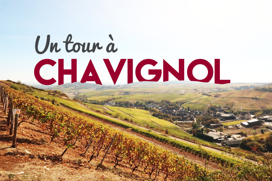 Chavignol domaine Bourgeois