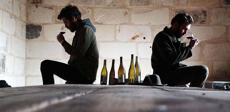 l'AOC Valençay : ces quelques hectares de vignes qui gagnent à être connues ! (vidéo)